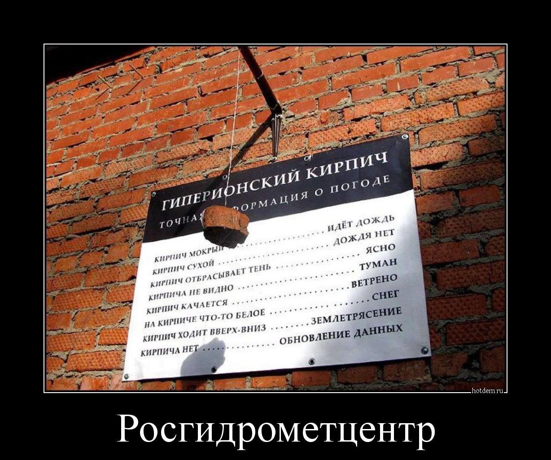 hotdem_ru_658148501661449069623.jpg