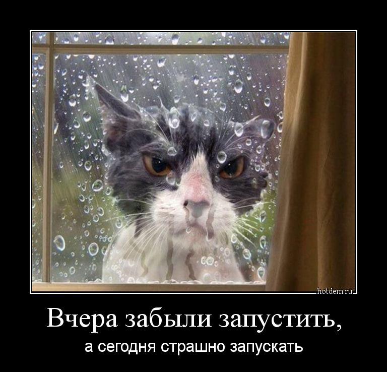 hotdem_ru_323287788842614389561.jpg