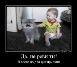 hotdem_ru_794869359054942990639.jpg
