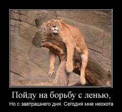 hotdem_ru_881767978700164087760.jpg