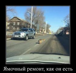 hotdem_ru_239050498480570424030.jpg