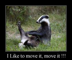 I Like to move it, move it !!!