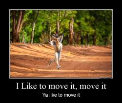 I Like to move it, move it Ya like to move it